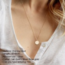Fashion geometric round lettering stainless steel necklace wholesale NHTF340374