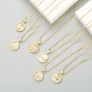 Fashion round shell star eye dragonfly copper goldplated zircon necklace wholesale NHLN340734