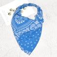 NHAQ1587993-Blue-print