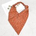 NHAQ1587998-Orange-red-floral