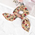 NHCL1531274-Flower-brown