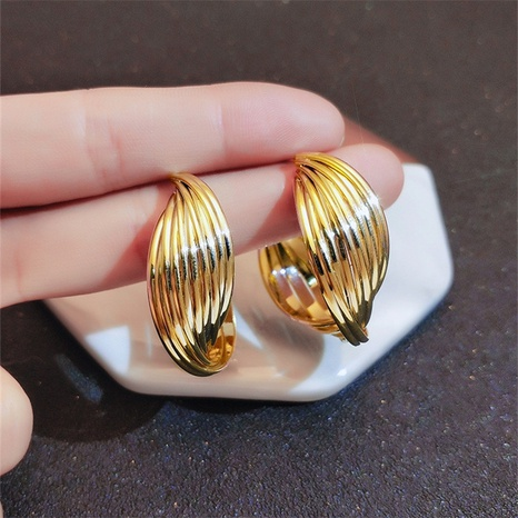 Fashion geometric twisted circle alloy earrings wholesale NHHER347639's discount tags