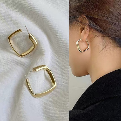 Fashion geometric large square alloy earrings  NHXI347846's discount tags