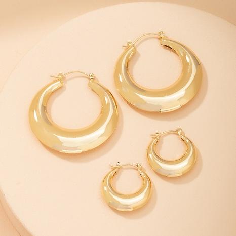 Fashion geometric alloy earrings wholesale NHAI347962's discount tags