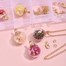 DIY Handmade Mini Apple Glass Accessories Necklace Material Box NHLL349608