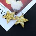NHOM1617321-Five-star-earrings