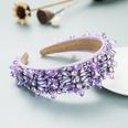 NHLN1627569-purple