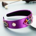 NHLN1643911-purple