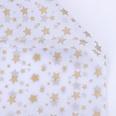 NHUY1708312-Golden-stars