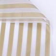 NHUY1708314-Golden-lines