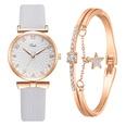NHSS1710185-Light-gray-watch-+-bracelet