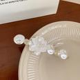 NHCQ1710839-Crystal-flower