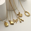 Fashion Variety Shaped Pendant Stainless Steel Necklace  NHJIE372401