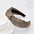 NHCL1775490-Leopard-Brown