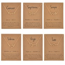 wholesale jewelry twelve constellation inlaid rhinestone necklace nihaojewelry  NHQIY389721