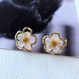 NHOM1751651-Small-Flower-Silver-Needle-Stud-Earrings-2CM