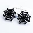 NHJJ1890987-55530-spider-web