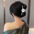 NHCQ1913818-9Single-flower-clip